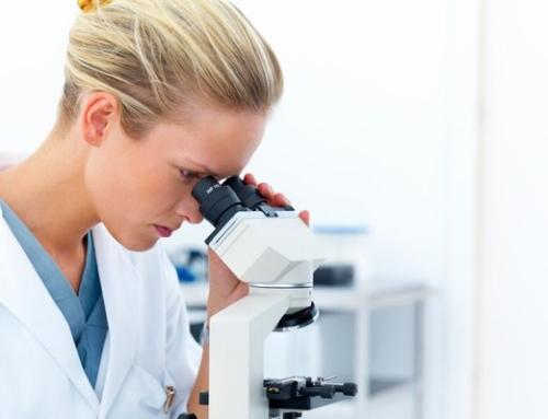 2017: Seminare für gynäkologische Infektionen mit Mikroskopierkurs